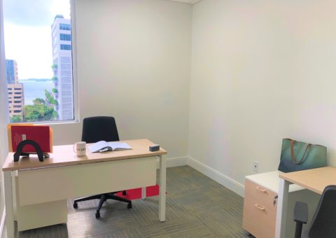 Private office with two desk